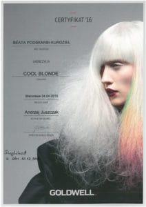 Cool Blonde - szkolenie fryzjerskie Goldwell